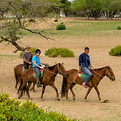 Horse_riding_mongolia_tour