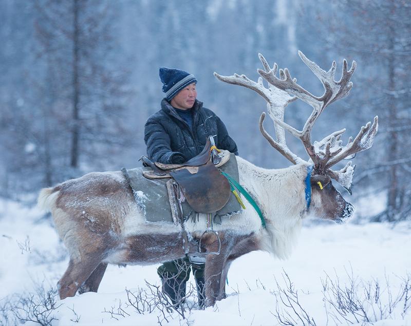 I_Documented_Tsaatan_Reindeer_People.jpg