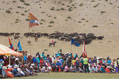 mongolia events and festival